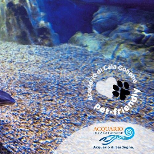L'Acquario di Cala Gonone diventa Pet Friendly